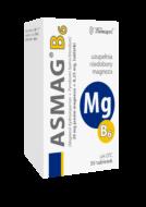 Asmag<sup>®</sup> B6